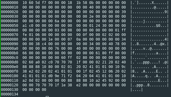 Hexdump of a converted image file
